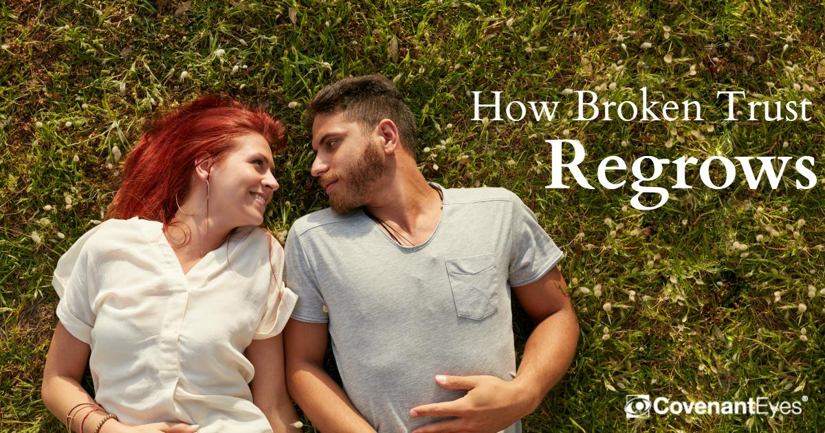 broken trust regrows